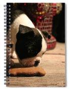 Snack Spiral Notebook