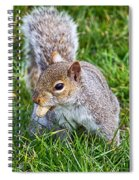 Snack Time For Squirrels Spiral Notebook