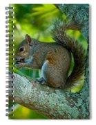 Snacking Squirrel Spiral Notebook
