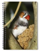 Snacktime Spiral Notebook