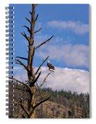 Snag  Spiral Notebook