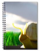 Snail And Grass... Spiral Notebook