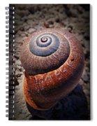 Snail Beauty Spiral Notebook