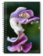 Snail Flower Spiral Notebook