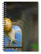 Snail Spiral Notebook