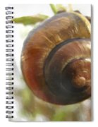 Snail Watercolor - Digital Painting Effect Spiral Notebook