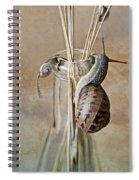 Snails Spiral Notebook