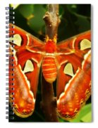 Snake Head Spiral Notebook