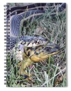 Snake With Legs Spiral Notebook