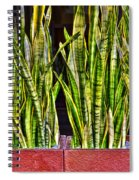 Snakes In A Box Spiral Notebook