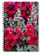 Snappers Spiral Notebook
