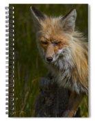 Snarl Spiral Notebook
