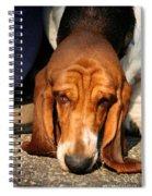 Sniffer Spiral Notebook