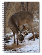 Sniffing Stag Spiral Notebook