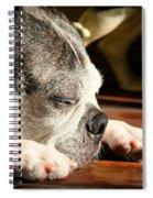 Snooze Spiral Notebook