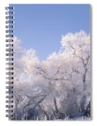 Snow And Ice Blanket Cottonwood Trees Spiral Notebook