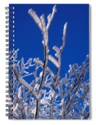 Snow And Ice Coated Branches Spiral Notebook