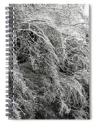 Snow And Ice Covered Trees At The Base Of Niagara Falls Spiral Notebook