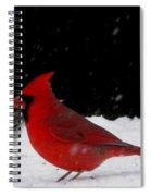 Snow Birds Spiral Notebook
