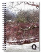 Snow Cabin And Tire Swing Spiral Notebook