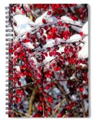 Snow Capped Berries Spiral Notebook