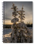 Snow Capped Sitka Spruce Spiral Notebook