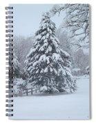Snow Conifer 2-1-15 Spiral Notebook