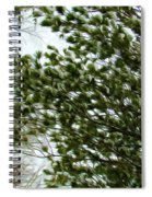 Snow Covered Pine Trees Spiral Notebook