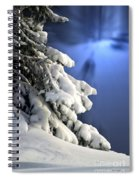 Snow Covered Tree Branches Spiral Notebook