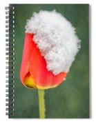 Snow Covered Tulip Spiral Notebook