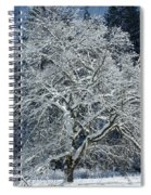 Snow Covered Winter Spiral Notebook