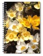 Snow Crocus Spiral Notebook