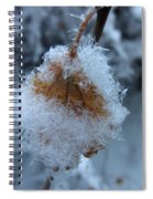 Snow Crystals Spiral Notebook