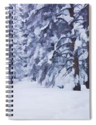 Snow-dappled Woods Spiral Notebook