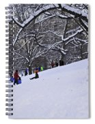 Snow Day In The Park Spiral Notebook