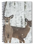 Snow Deer Spiral Notebook