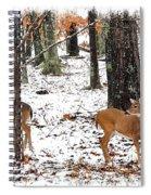 Snow Doe's 1 Spiral Notebook