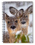 Snow Does Spiral Notebook