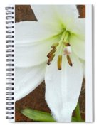 Snow Drops Spiral Notebook