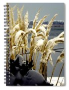 Snow Dust Spiral Notebook