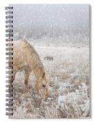 Snow Falling On Horses Spiral Notebook