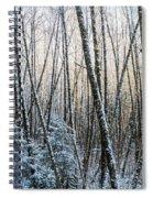 Snow Falls On The Alders  Astoria Spiral Notebook