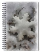 Snow Flake 01 Photo Art Spiral Notebook