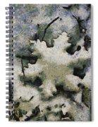 Snow Flake 04 Photo Art Spiral Notebook