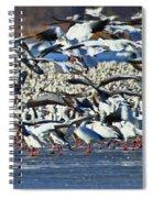 Snow Geese Spiral Notebook