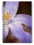 Snow Glories 2 Spiral Notebook