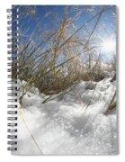Snow Grass Spiral Notebook