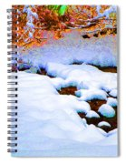 Snow In Color Spiral Notebook