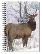 Snow In The Face  Spiral Notebook