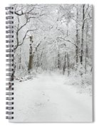 Snow In The Park Spiral Notebook